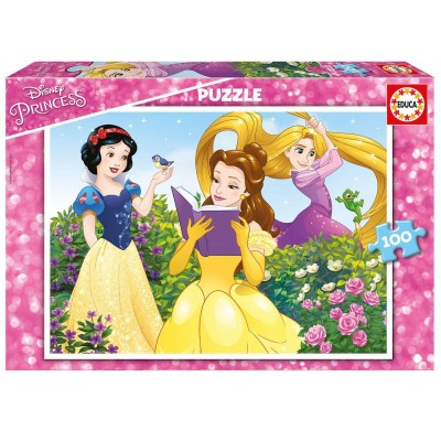 Educa-17167 2 Puzzles - Disney Princess