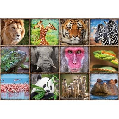 Puzzle  Educa-17656 Collage Mit Wildtieren