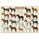 Puzzle  Eurographics-6000-0078 Pferde (englischer Text)