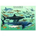 Puzzle  Eurographics-6000-0079 Haie