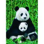 Puzzle  Eurographics-6000-0173 Panda-Familie