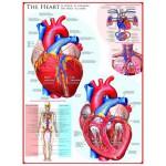 Puzzle  Eurographics-6000-0257 Das Herz