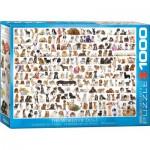 Puzzle  Eurographics-6000-0581 Hundewelt