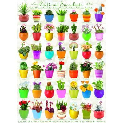 Puzzle  Eurographics-6000-0654 Kaktus und Sukkulenten