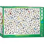 Puzzle  Eurographics-6000-0821 Vögelwelt