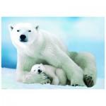 Puzzle  Eurographics-6000-1198 Eisbär und Baby