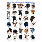 Puzzle  Eurographics-6000-1510 Klassische Hundenrassen