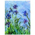 Puzzle  Eurographics-6000-2034 Claude Monet: Schwertlilien (Detail)