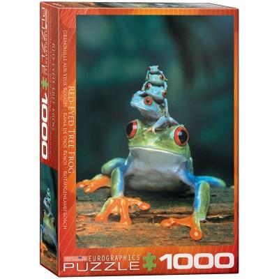 Puzzle  Eurographics-6000-3004 Rotaugenlaubfrosch