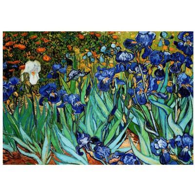 Puzzle  Eurographics-6000-4364 Van Gogh: Schwertlilien