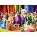 Puzzle  Eurographics-6000-5543 Kitten Pride