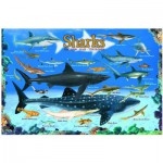 Puzzle  Eurographics-6100-0079 Haie