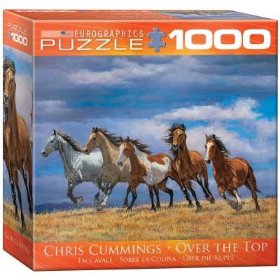 Puzzle  Eurographics-8000-0709 Chris Cummings - Über die Kuppe