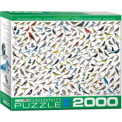 Puzzle  Eurographics-8220-0821 Die Welt der Vögel von David Sibley