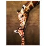 Puzzle  Eurographics-8500-0301 Der Kuss der Giraffe Mutter