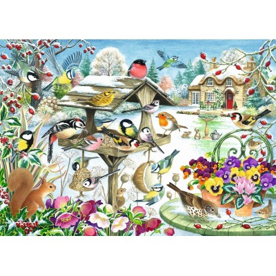 Puzzle  Jumbo-11183 Claire Comerford - Winter Garden Birds