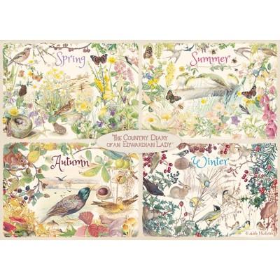 Puzzle  Jumbo-11307 The Country Diary 4 Seasons