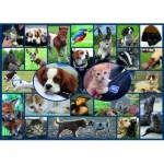 Puzzle  Gibsons-G7086 All Creatures Great & Small