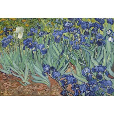 Puzzle  Grafika-Kids-00196 XXL Teile - Vincent van Gogh, 1889