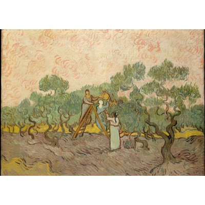 Puzzle  Grafika-Kids-00445 Van Gogh: Women Picking Olives,1889