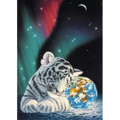 Puzzle  Grafika-Kids-01644 Magnetische Teile - Schim Schimmel - Earth Light