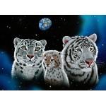 Puzzle  Grafika-Kids-01663 Schim Schimmel - Gentle Family