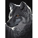 Puzzle  Grafika-Kids-01702 Magnetische Teile - Schim Schimmel - Night Wolf