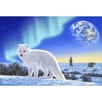 Puzzle  Grafika-Kids-01951 XXL Teile - Schim Schimmel - Artic Fox