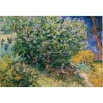 Puzzle  Grafika-Kids-02039 Vincent Van Gogh - Flieder, 1889