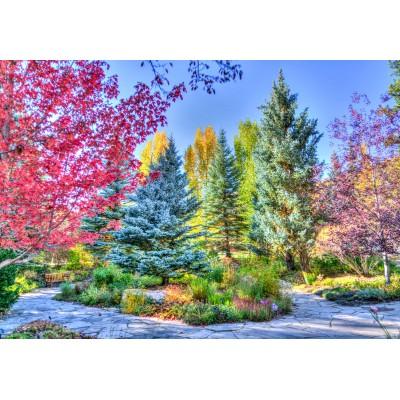 Puzzle  Grafika-Kids-02054 Bunter Wald, Colorado, USA