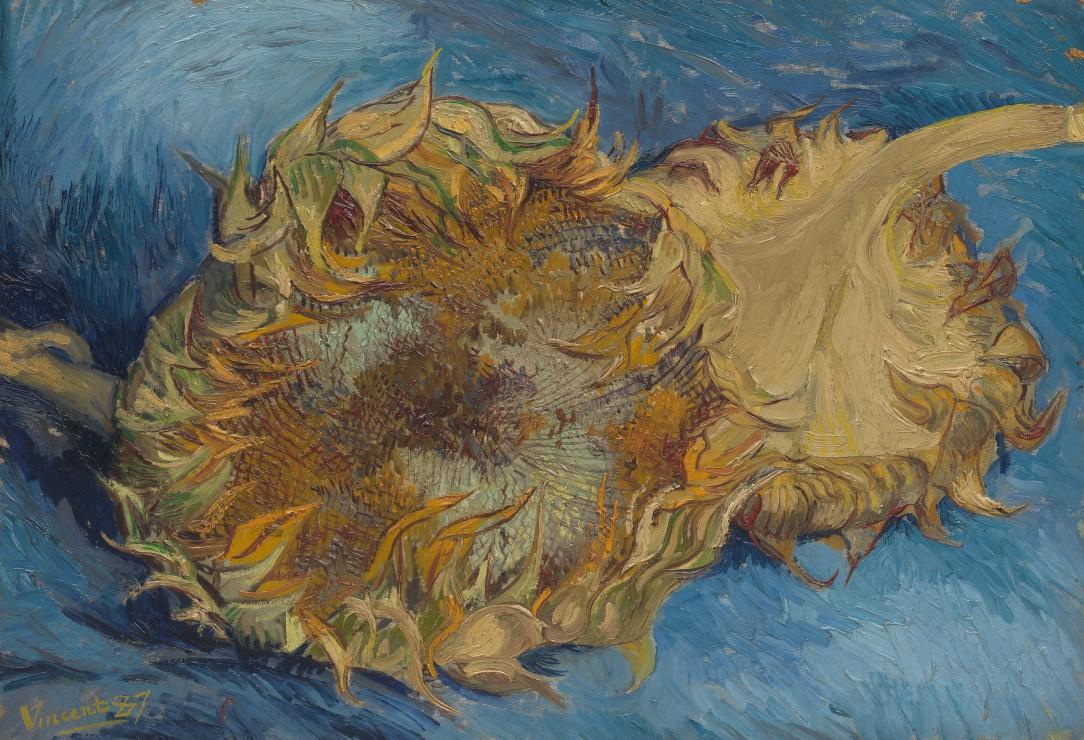 Puzzle Xxl Teile Van Gogh Die Sonnenblumen 1887 Grafika Kids