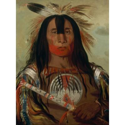 Puzzle  Grafika-00236 George Catlin: Stu-mick-o-súcks, Buffalo Bull's Back Fat, Head Chief, Blood Tribe, 1832