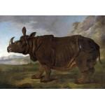 Puzzle  Grafika-00387 Jean-Baptiste Oudry: Clara le Rhinocéros, 1749