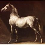Puzzle  Grafika-00427 Théodore Géricault: Cheval Arabe Gris-Blanc