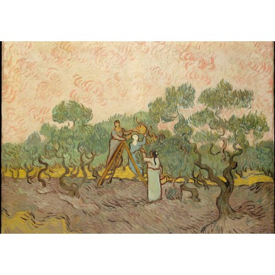 Puzzle  Grafika-00863 Van Gogh: Women Picking Olives,1889