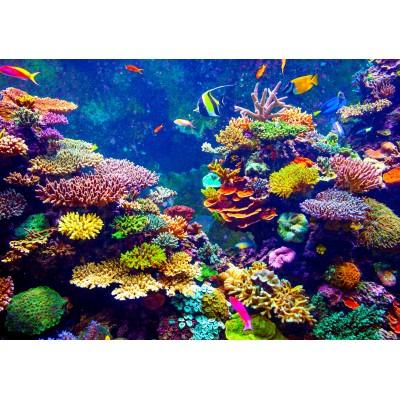Puzzle  Grafika-00974 Unterwasser