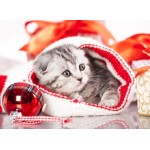 Puzzle  Grafika-01053 Weihnachtskätzchen