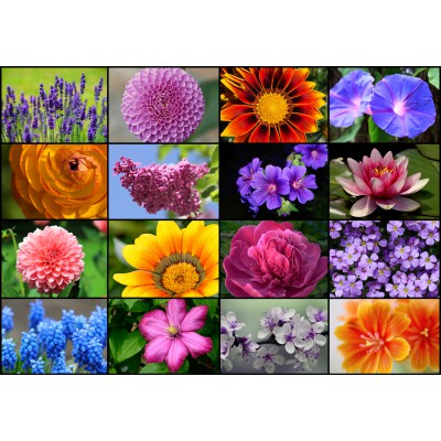 Puzzle  Grafika-01215 Collage - Frühlingsblumen