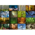 Puzzle  Grafika-01369 Collage - Bäume