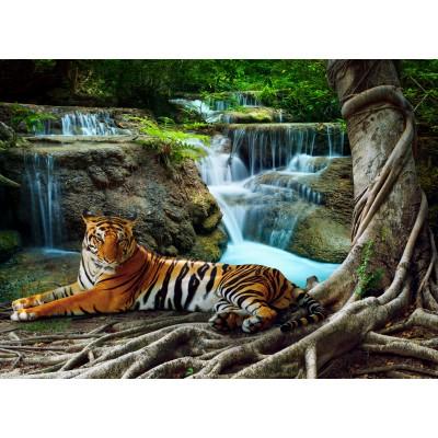 Puzzle Grafika-01562 Tiger