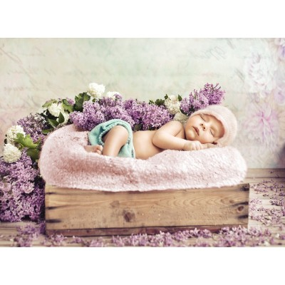 Puzzle  Grafika-01608 Konrad Bak: Baby sleeping in the Lilac