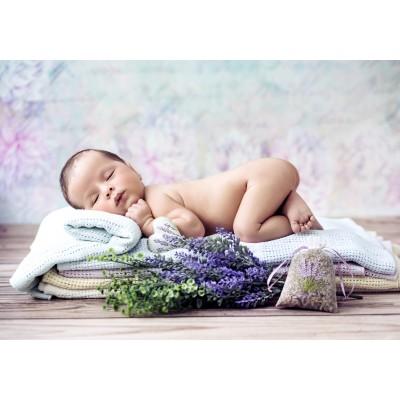 Puzzle  Grafika-01624 Konrad Bak: Baby Lavender