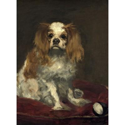Puzzle  Grafika-01706 Edouard Manet: A King Charles Spaniel, 1866