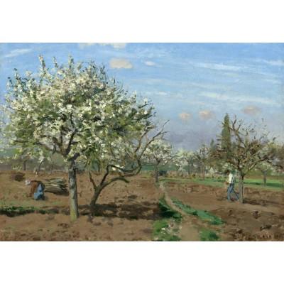 Puzzle  Grafika-02028 Camille Pissarro : Orchard in Bloom, Louveciennes, 1872