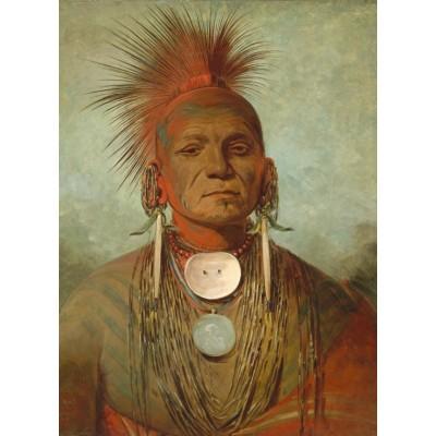 Puzzle  Grafika-02221 George Catlin: See-non-ty-a, an Iowa Medicine Man, 1844-1845