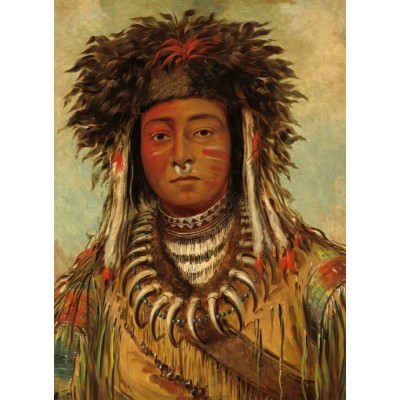 Puzzle  Grafika-02229 George Catlin: Boy Chief - Ojibbeway, 1843