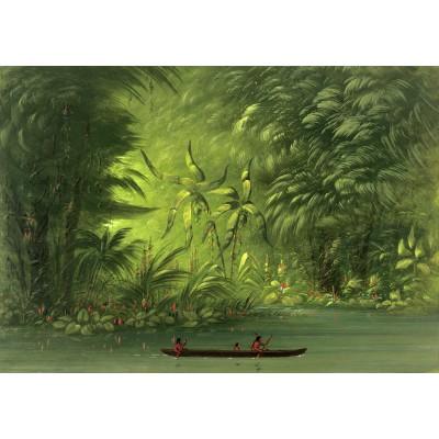 Puzzle  Grafika-02242 George Catlin: Entrance to a Lagoon, Shore of the Amazon, 1854-1869