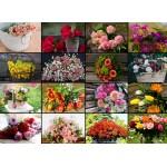 Puzzle  Grafika-02568 Collage - Blumen