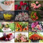 Puzzle  Grafika-02570 Collage - Blumen