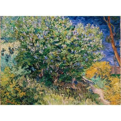 Puzzle Grafika-02789 Vincent Van Gogh - Flieder, 1889